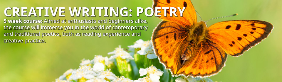 Creative Writing: Poetry Monday 14th September 2015